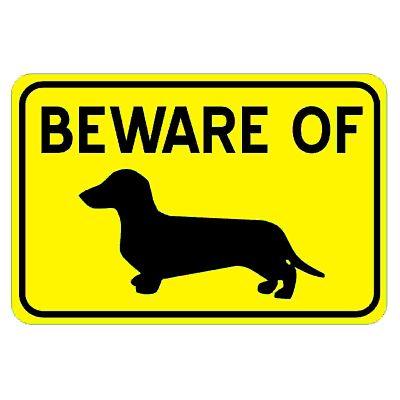 beware-dachshund