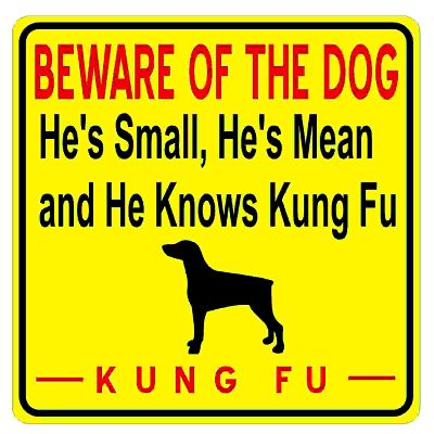 beware-of-dog-kungfu