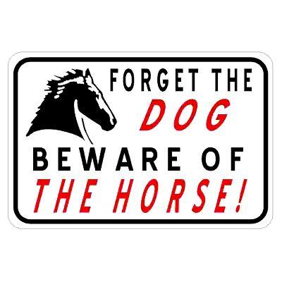 beware-of-horse