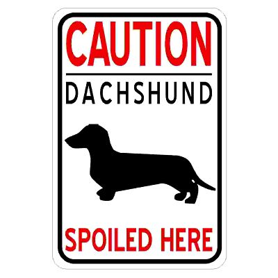 caution-dachshund-spoiled-here