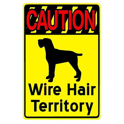 caution-wire-hair-territory