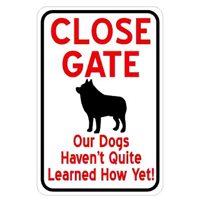 close-gate-dogs-havent-learnt-yet