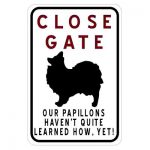 close-gate-paillons-havent-learnt-how
