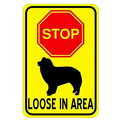 dog-loose-in-area