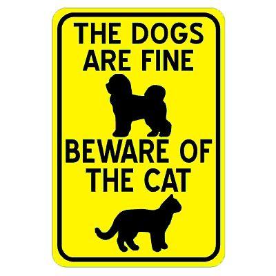 dogs-are-fine-beware-of-cat