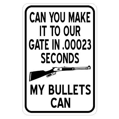 gate-in-00023-seconds-my-bullets-can