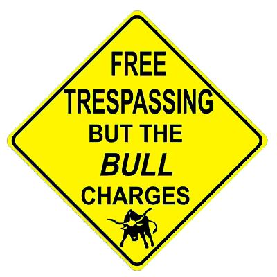 bull-charges
